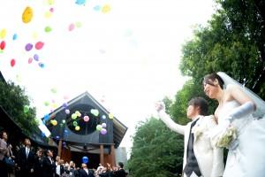 ubel_ishihara_1_rng